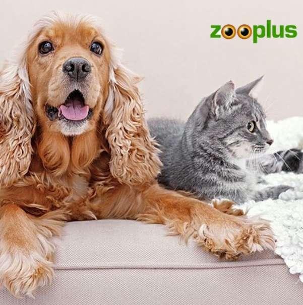 Steun ons door te bestellen bij Zooplus
