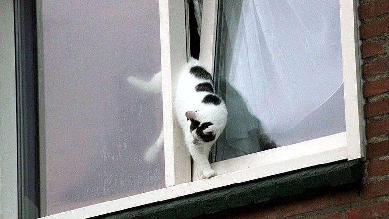 Lekker weer hè, raam op een kier?